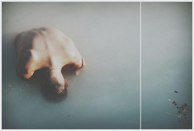 Viola cangi | fotografia